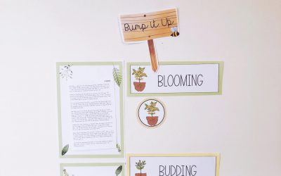 Bump It Up Walls – Relax! Just Watch Your Students Grow