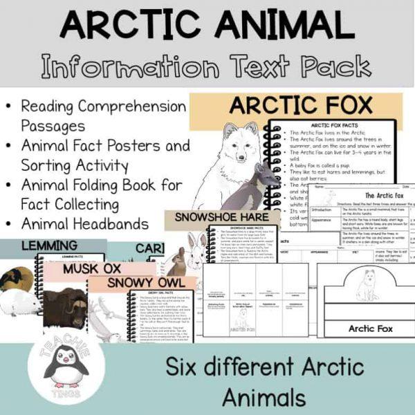 arctic animal information report